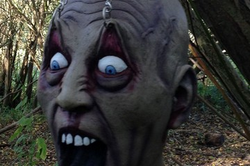 Halloween Hides 2012