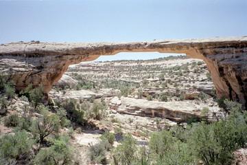 Desert Adventures 1994