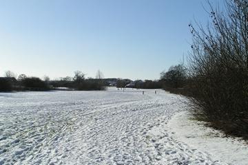Snowy Tattenhoe